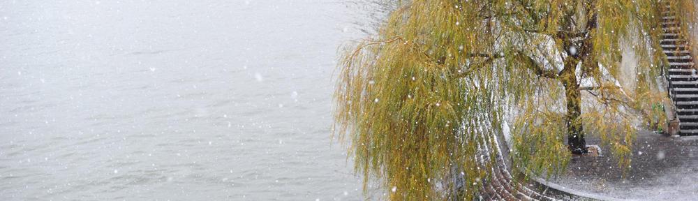 Keller Williams Realty Lake Oconee